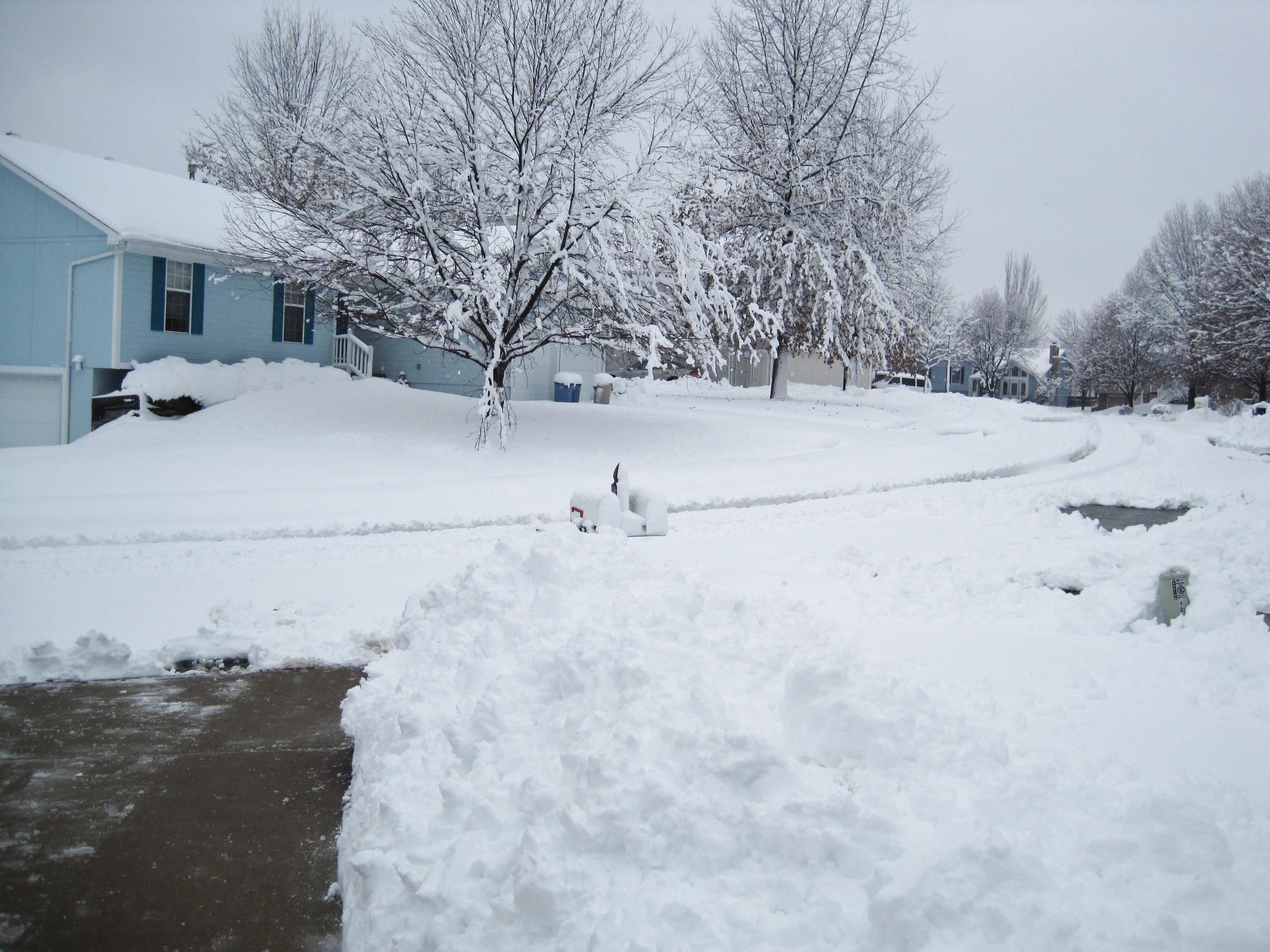 snowymailbox