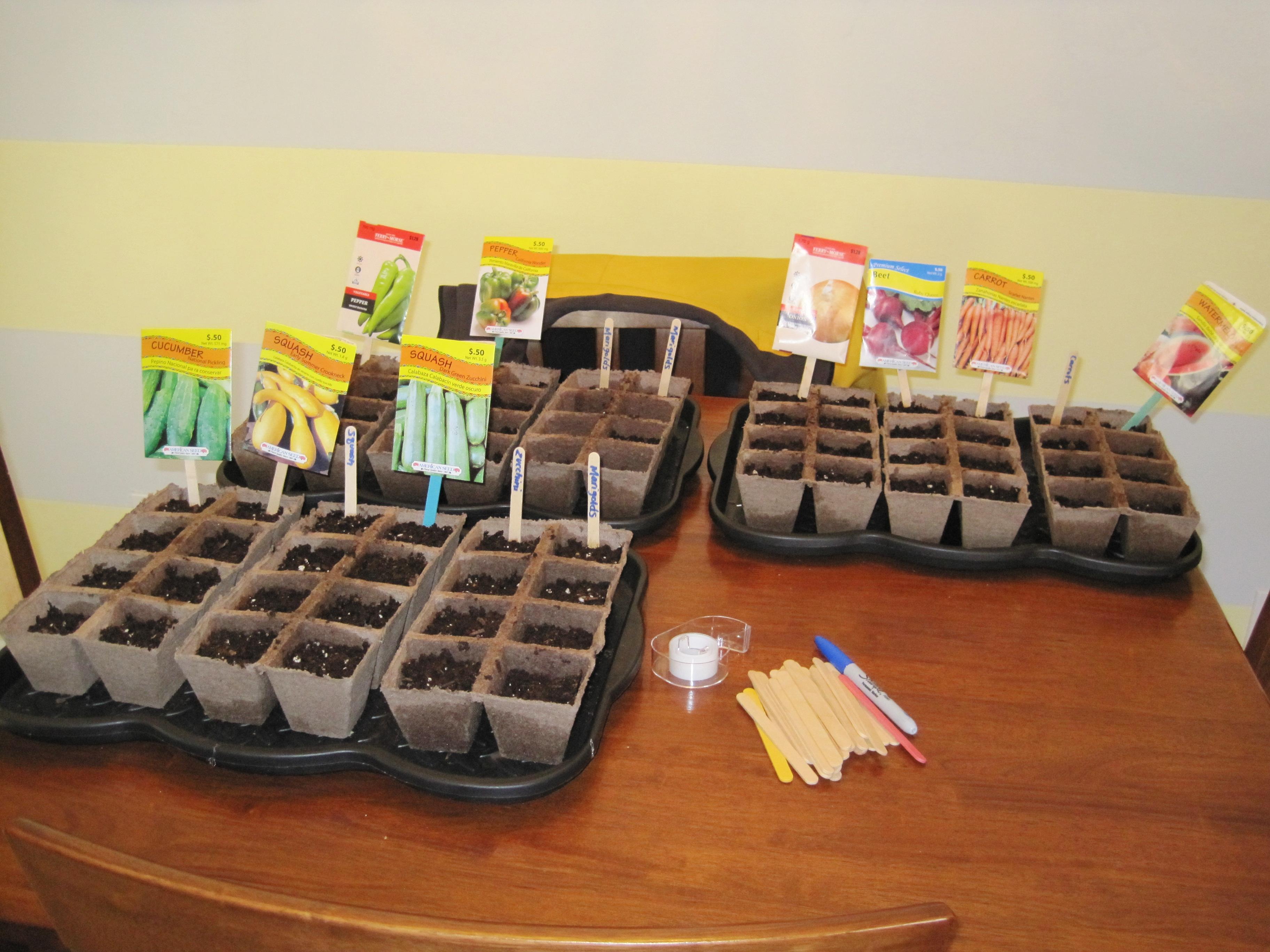 garden seeds 8