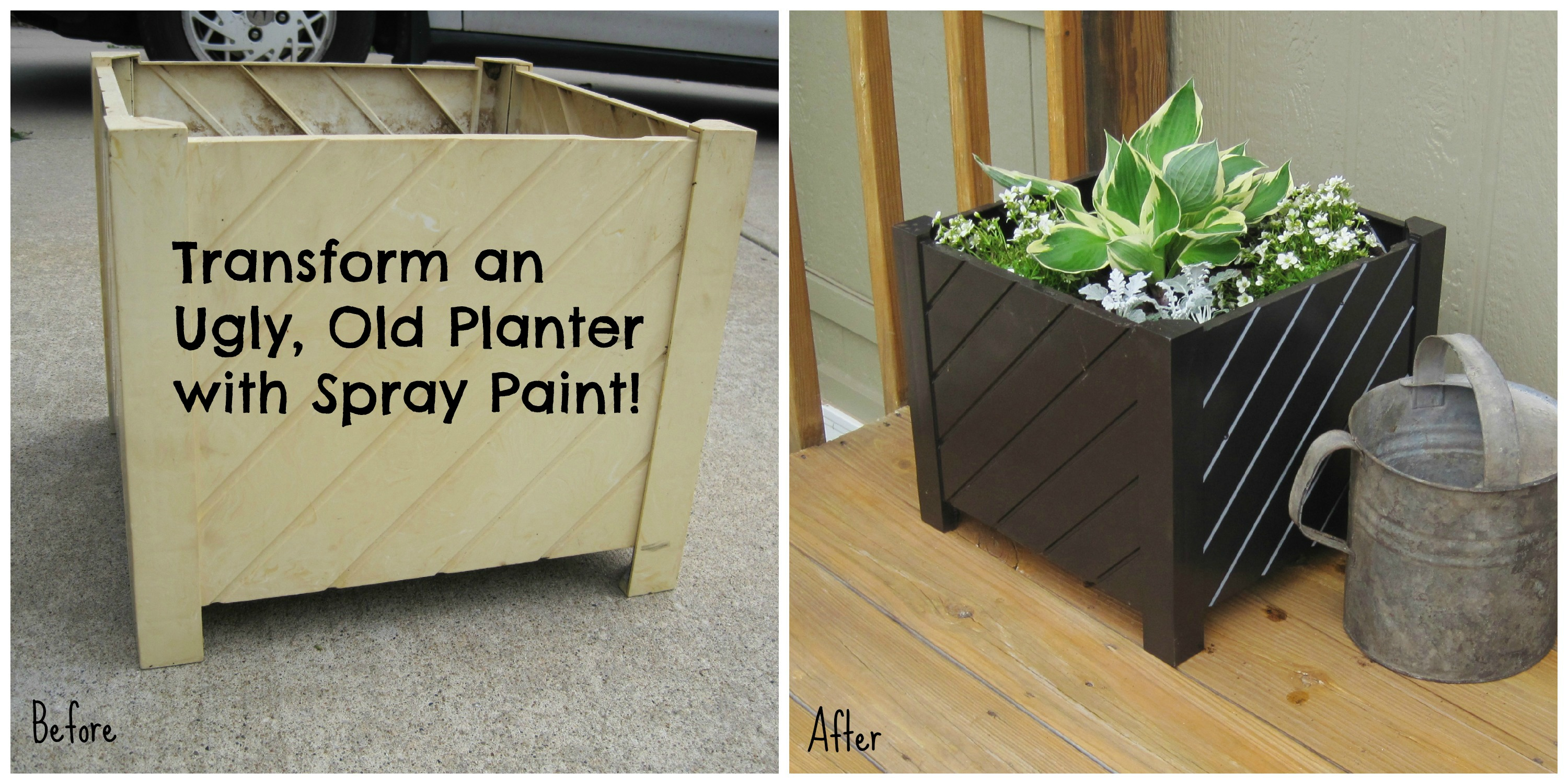 Planter Before-After