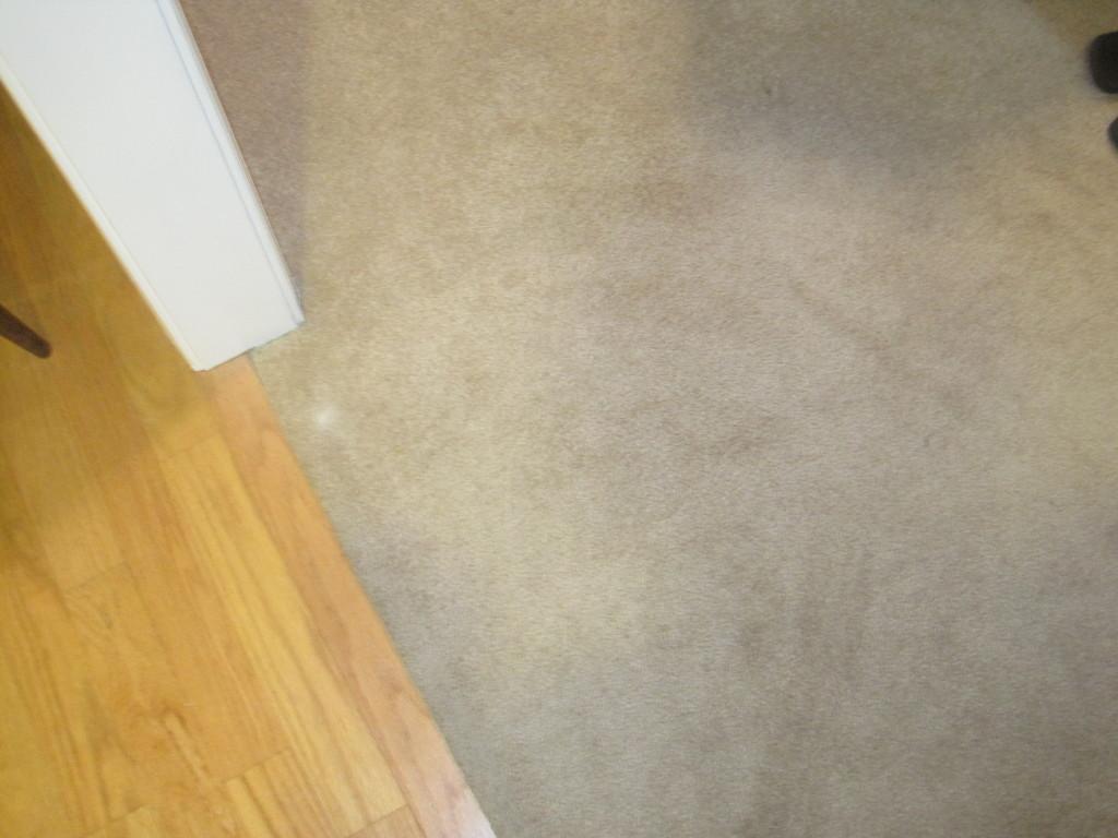 Mud on Carpet 3