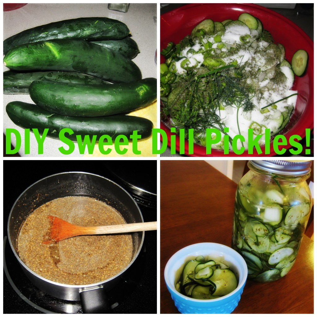 DIY Sweet Dill Pickles