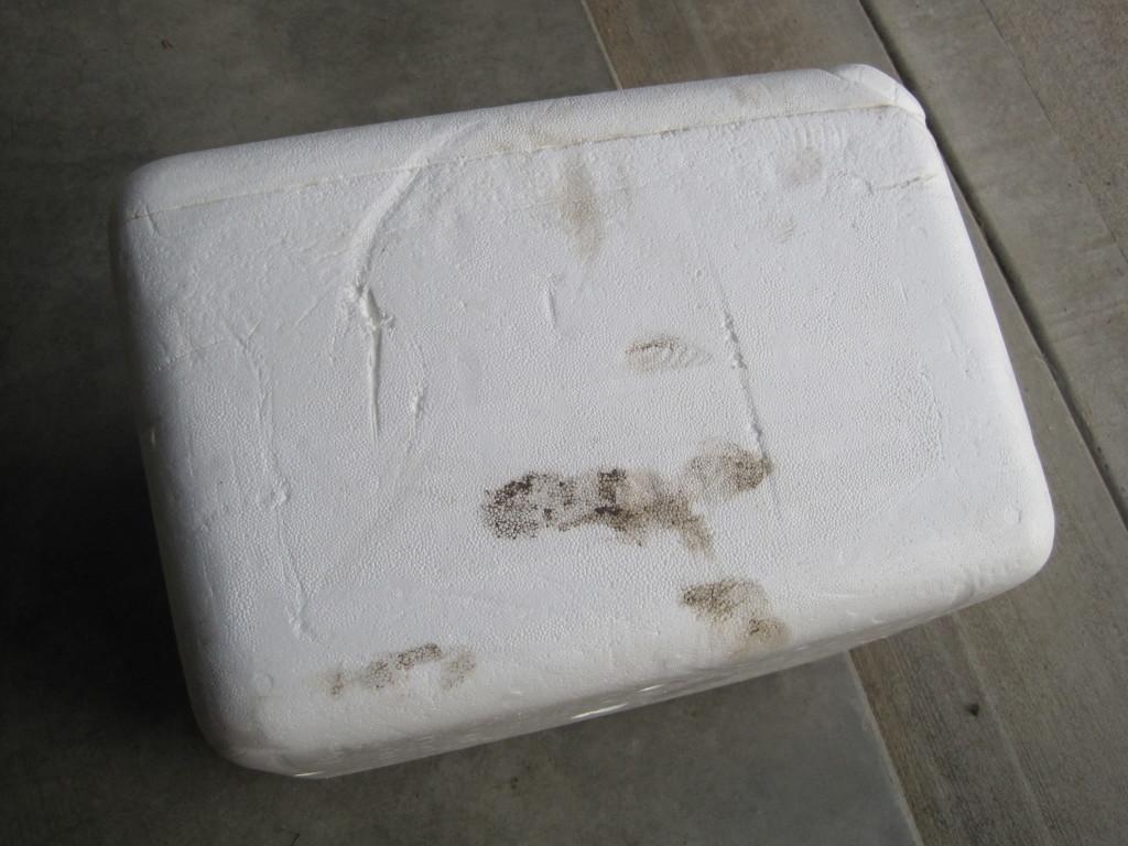 Foam Cooler Ottoman Before