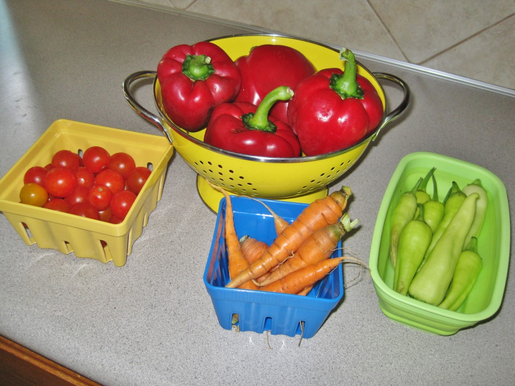 September Garden Produce