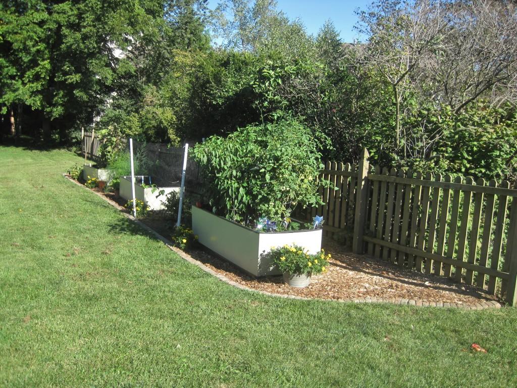 Stone Garden Edging 4