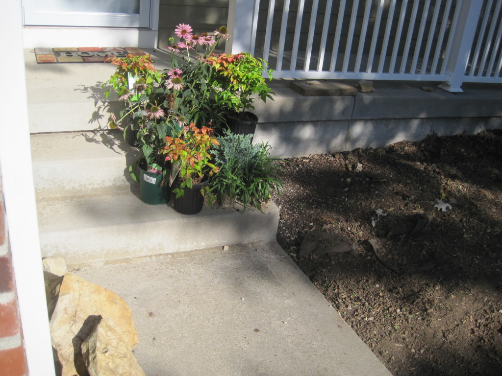 Front Landscaping Plants 2