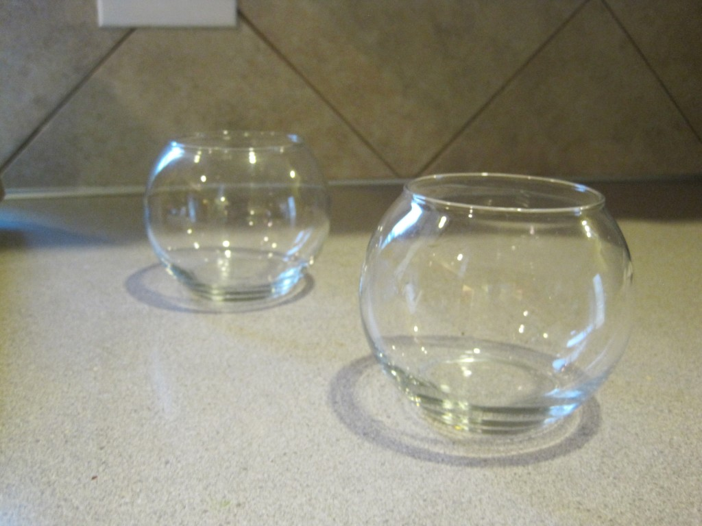 Glass Terrarium Jars
