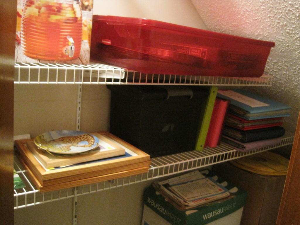 Organized basement closet