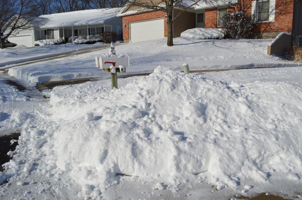 February Snow 7