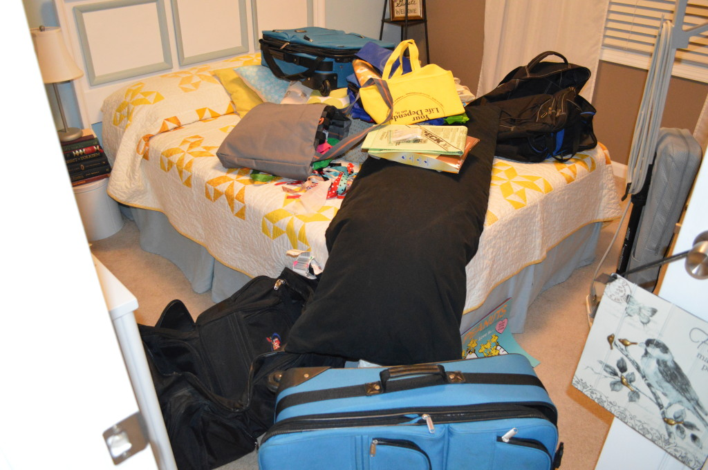 Guest Room Closet Revamp