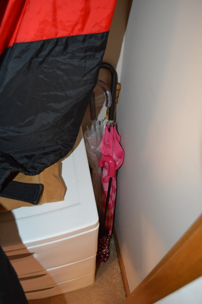 Umbrellas in Coat Closet