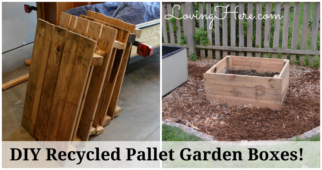 pallet garden beds before-after
