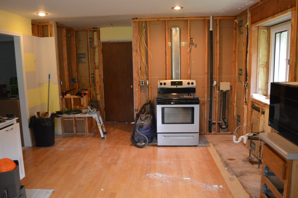 Completely Gutted Kitchen 2
