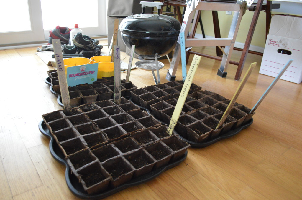 Garden 14 seeds planted