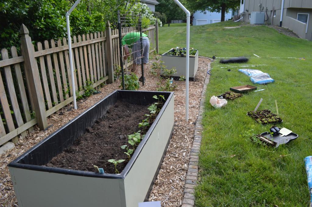 Garden Work May 2014