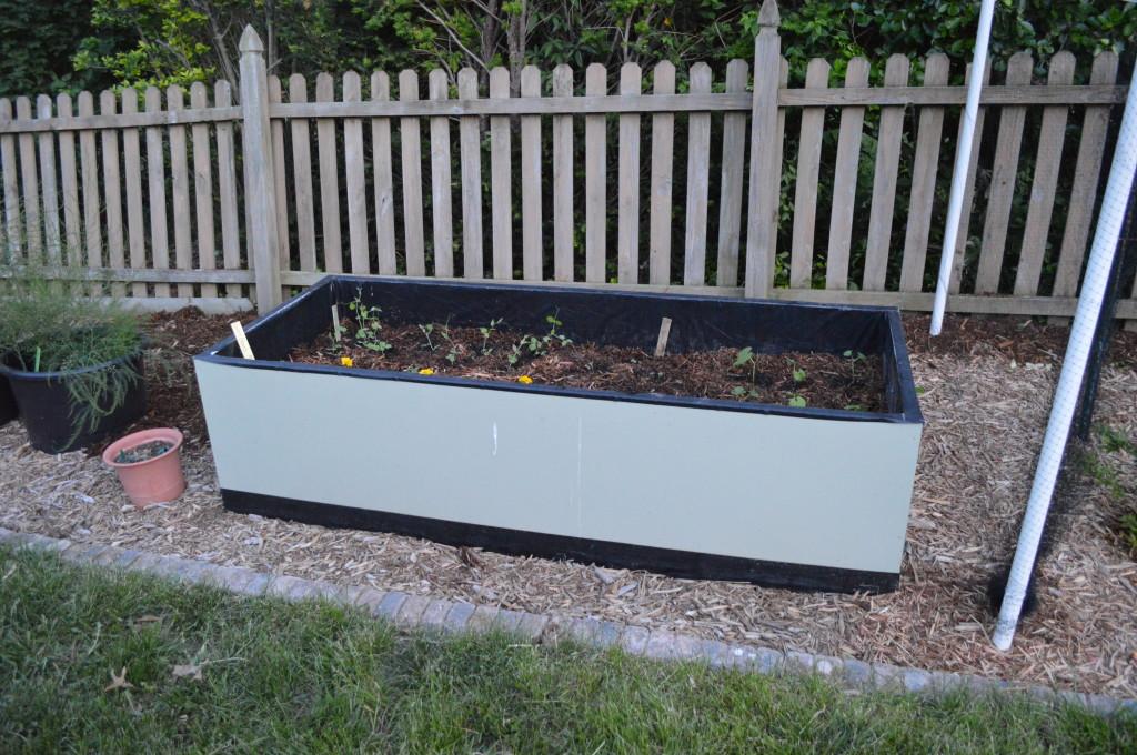 Planted Garden 2014