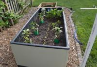 Planting Garden 2014