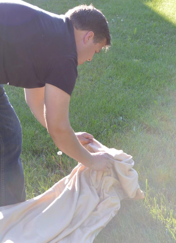 Injured Hawk in Yard 2
