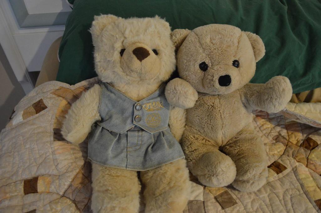 Teddies Together Forever