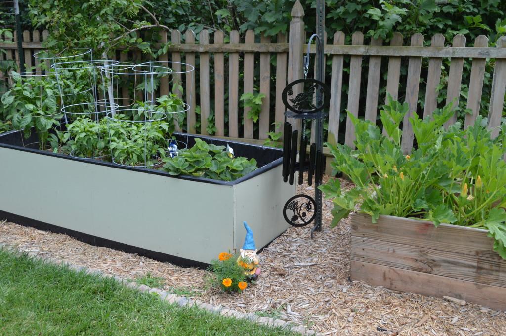 Garden 2014 July 2
