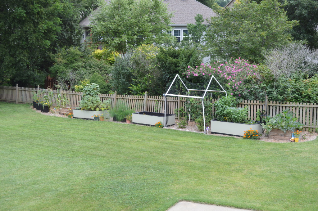August Garden Update 14