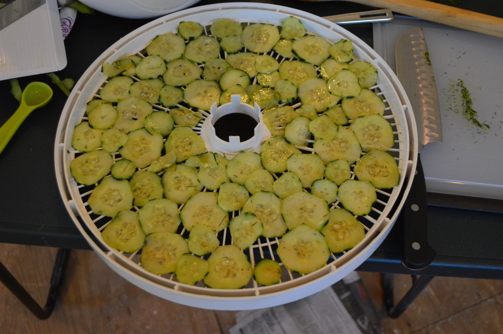 Making Cucumber Chips Dehydrator