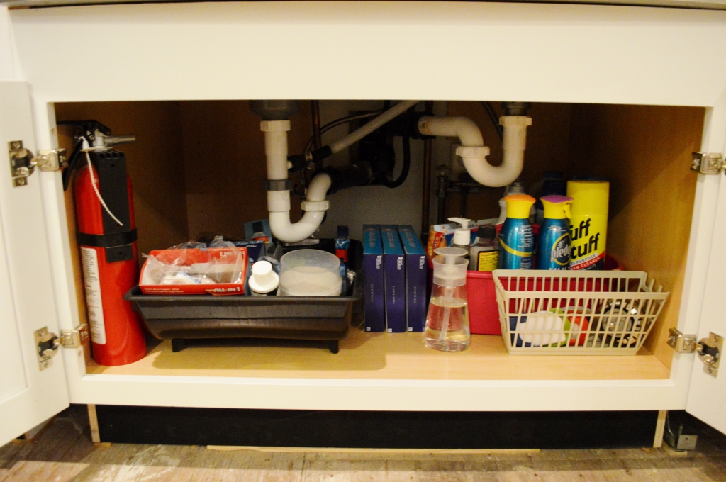 Moving Into Under Sink Cabinet