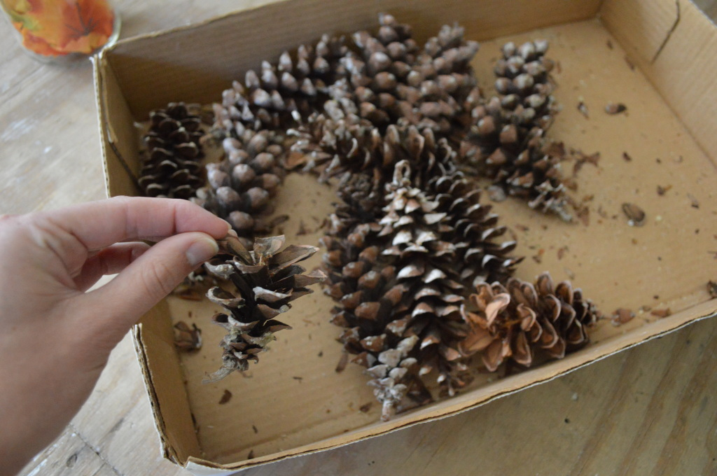 Hot gluing pinecones to fall wreath 2