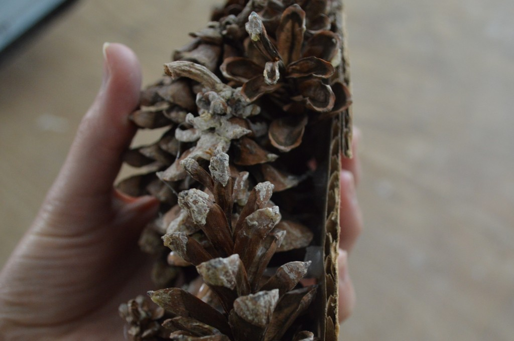 Hot gluing pinecones to fall wreath 4