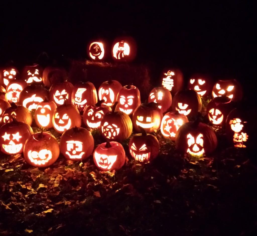 Powell Gardens Pumpkins