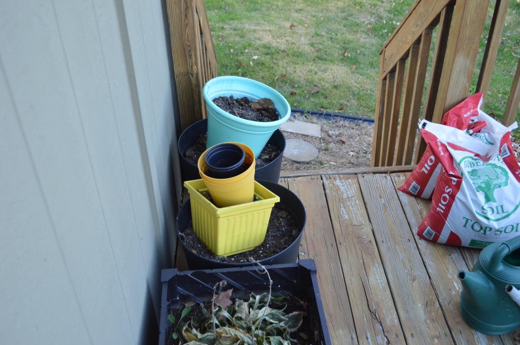 Fall Outdoor Chores