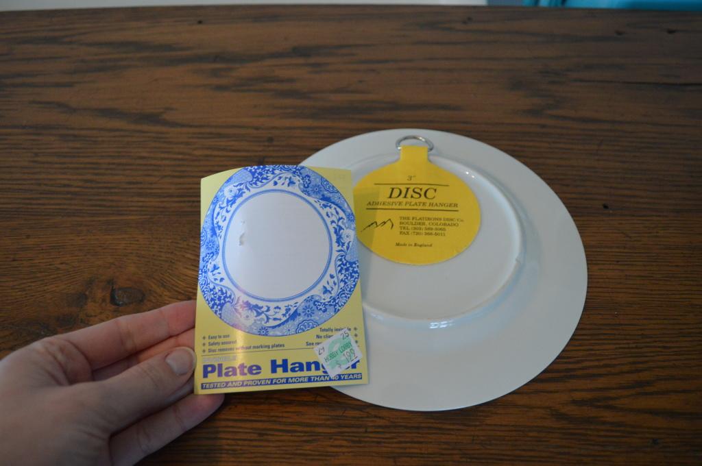 Disc Plate Hanger