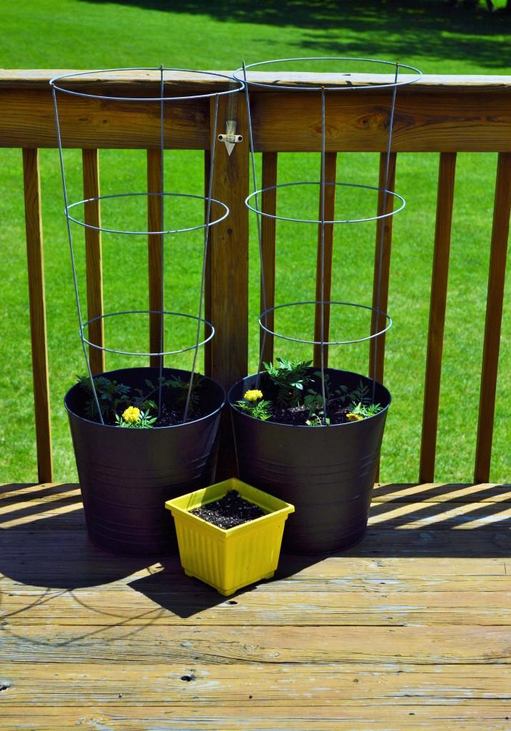 Deck Tomato Planters 2