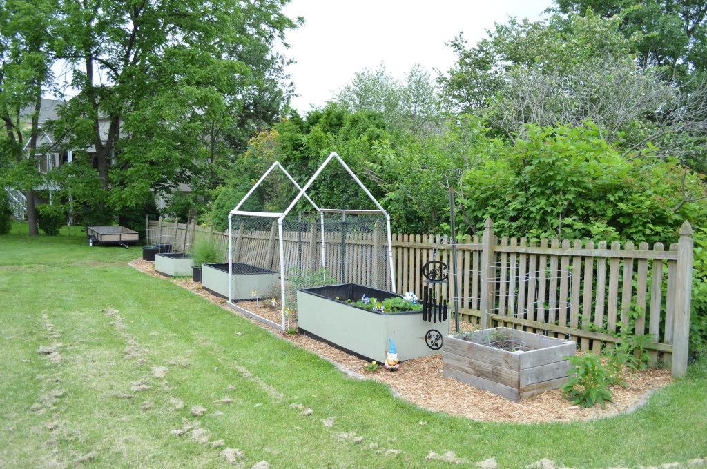 Garden Set up 2015 4