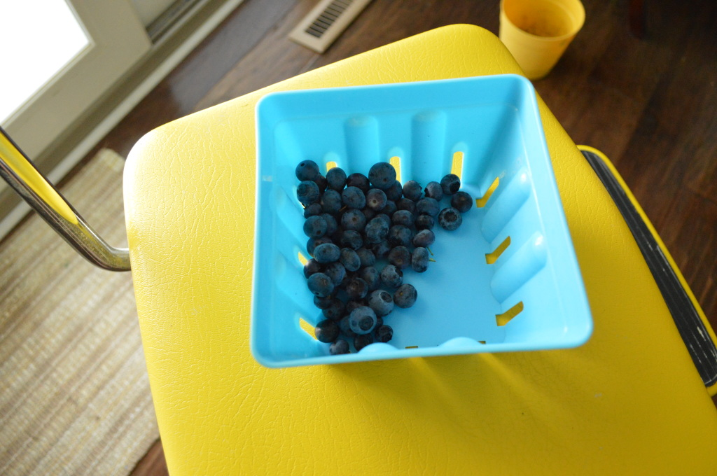 Garden Blueberries June 2015