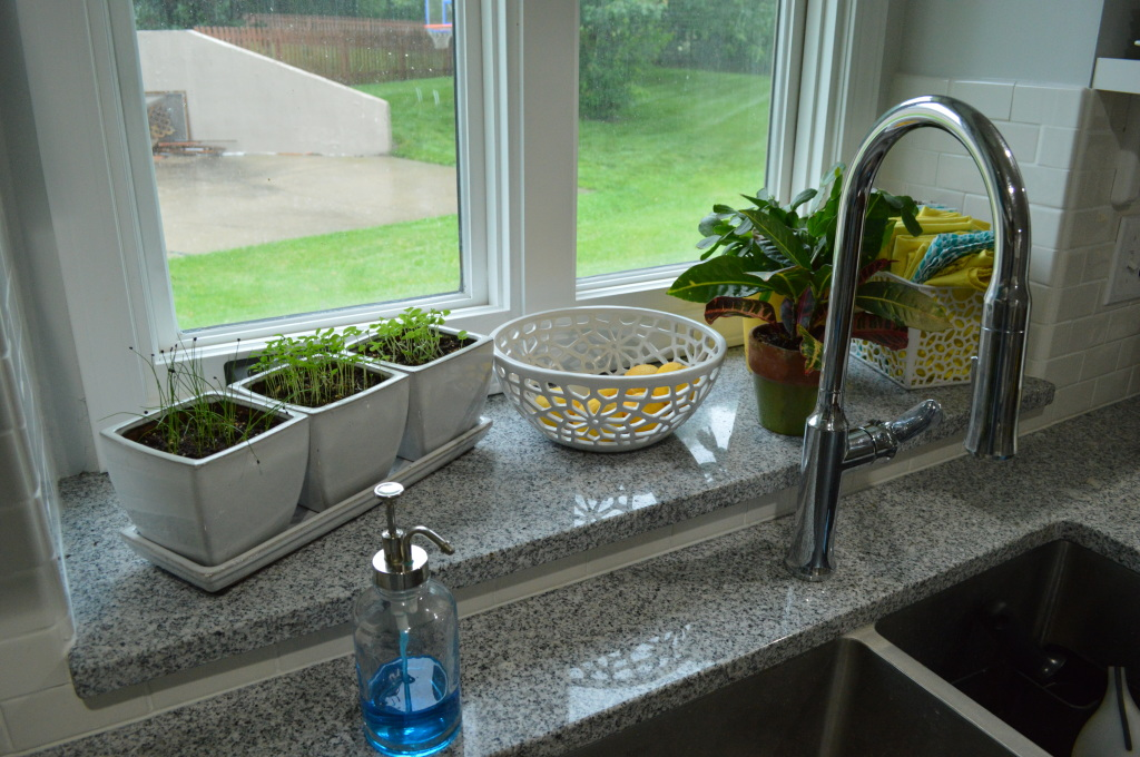 House Plants and Herb Garden Kitchen Window Sill