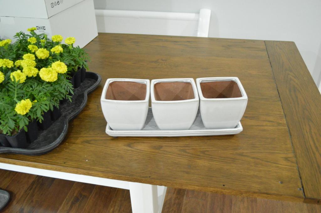 Kitchen Window Sill Herb Planter