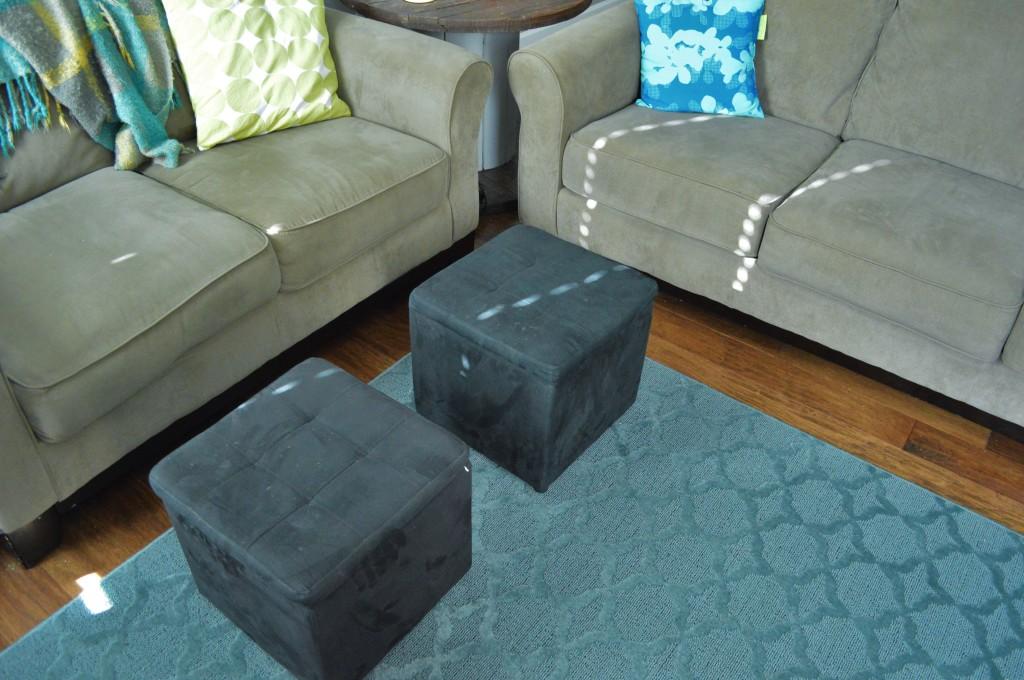 Living Room Rug 5