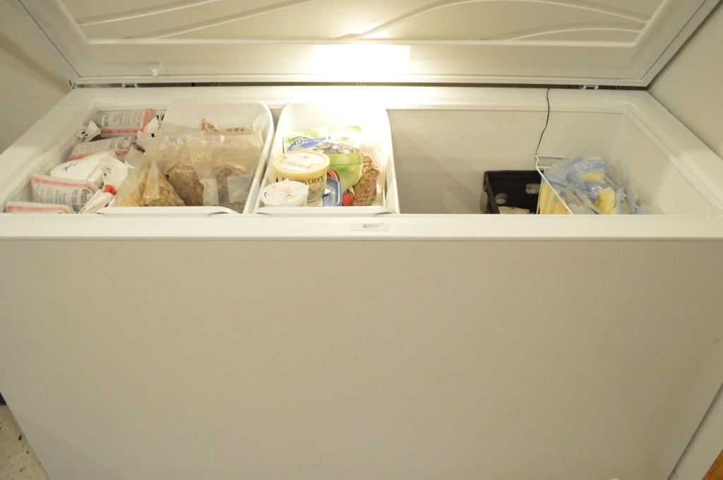 new basement freezer inside
