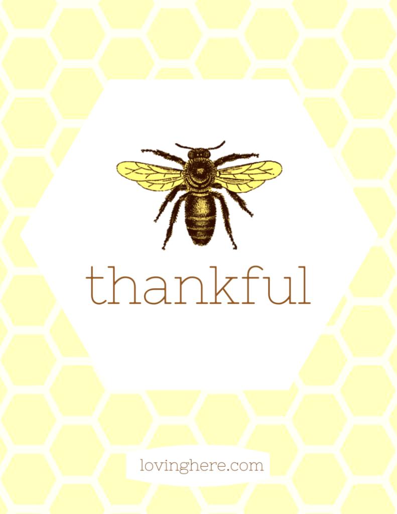 bee thankful 2