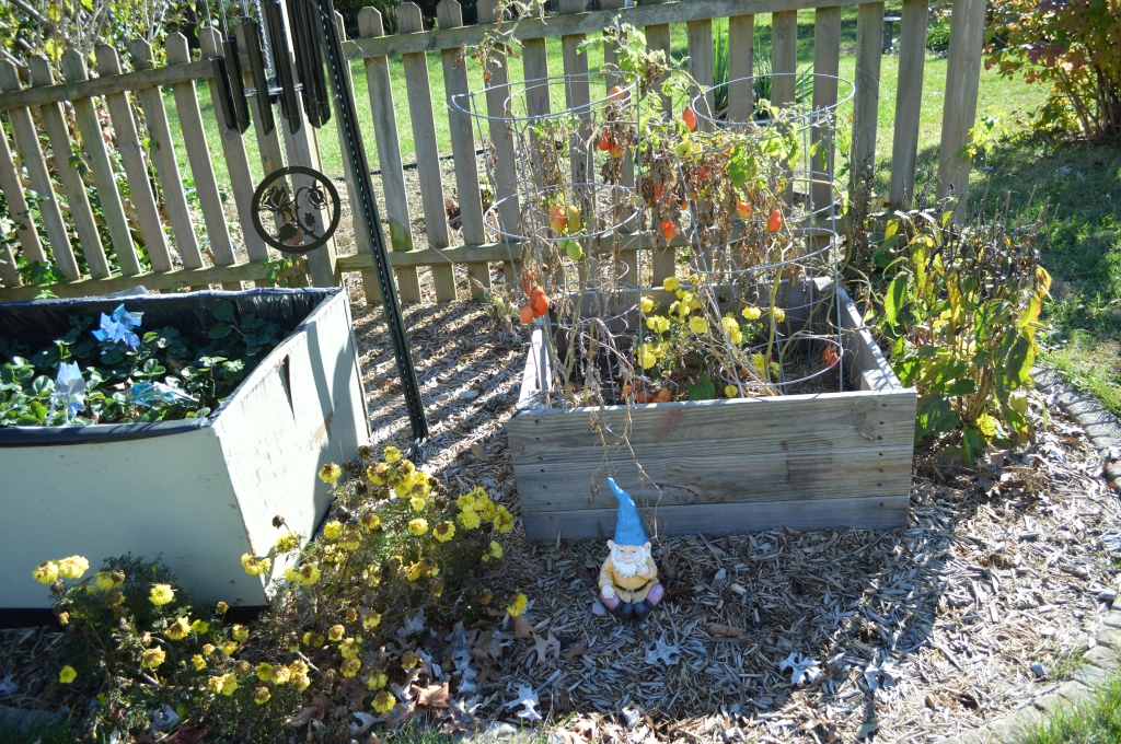 garden nov cleaning