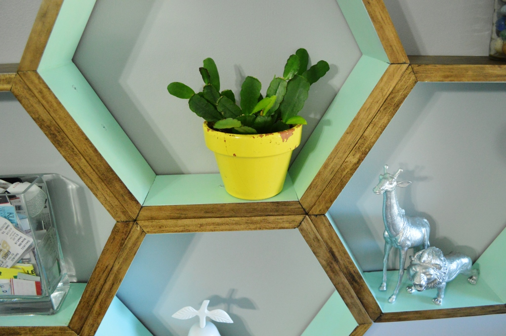DIY Honeycomb Shelves Decor Christmas Cactus 2