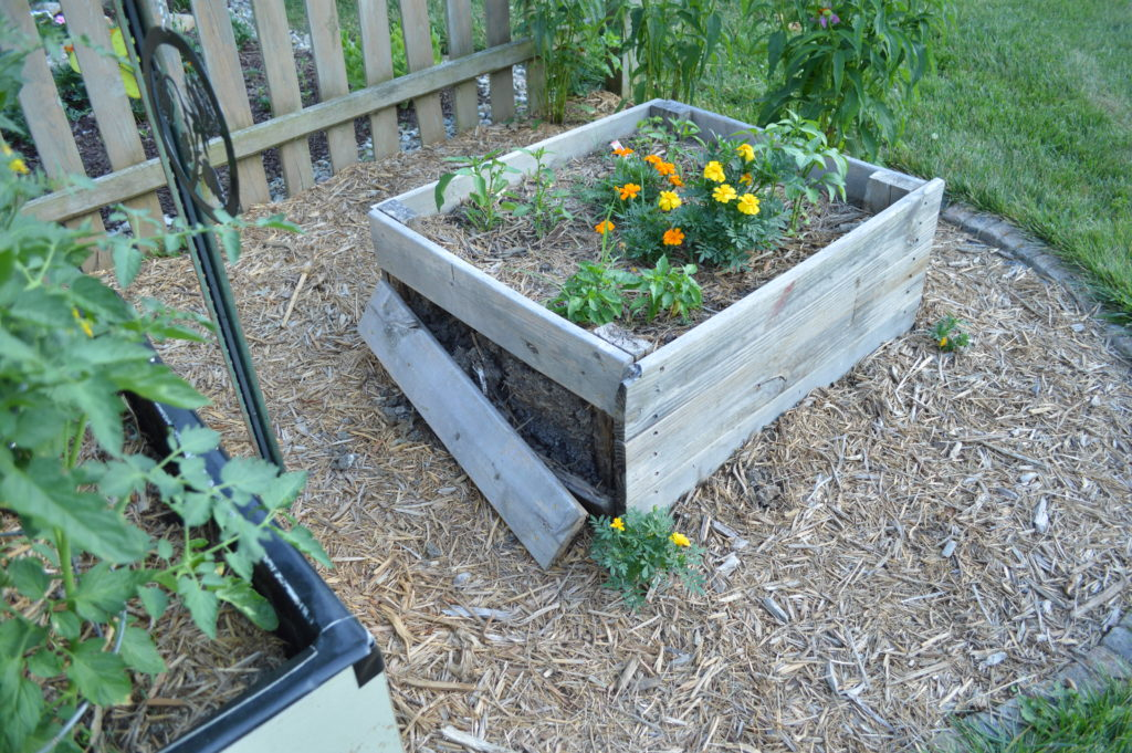 Container Gardening Suburban Garden June 2016 Broken Pallet Raised Garden Bed