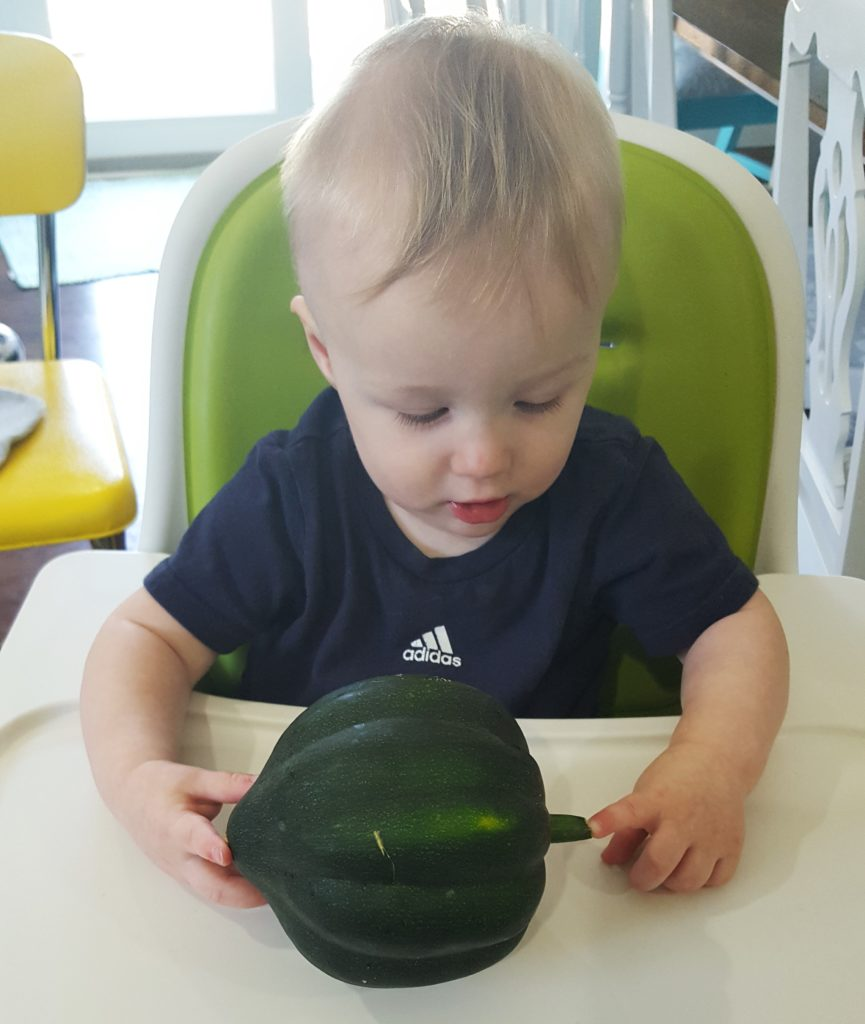 Will and Acorn Squash