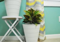 replanted-houseplant-croton-petra-in-office-ikea-hack-trash-can-flower-pots
