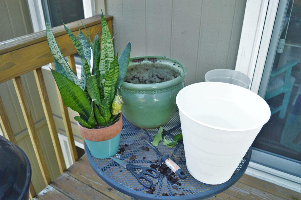 replanting-houseplants-ikea-hack-flower-pot