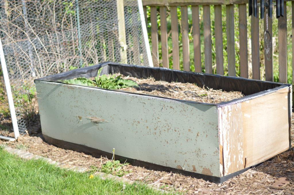 Damaged Raised Garden Beds April 17