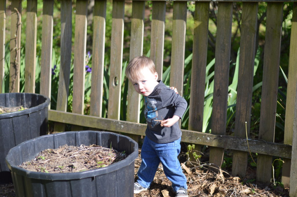 Will in Garden April 17 (2)