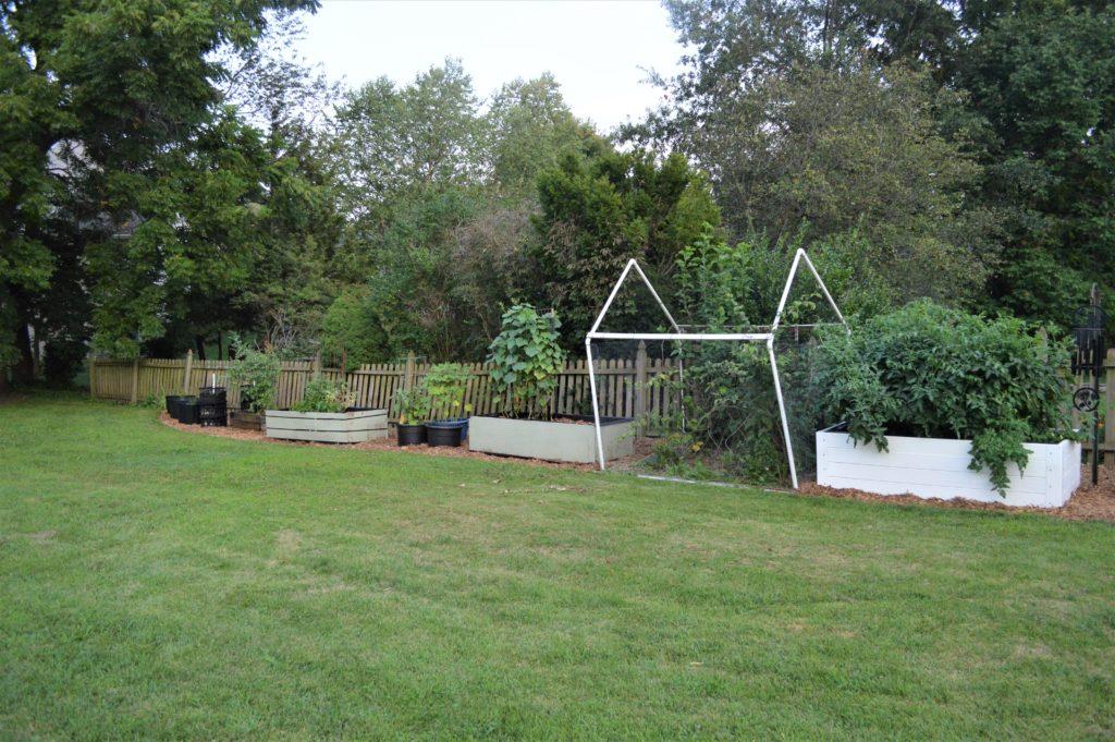 garden august 17 update